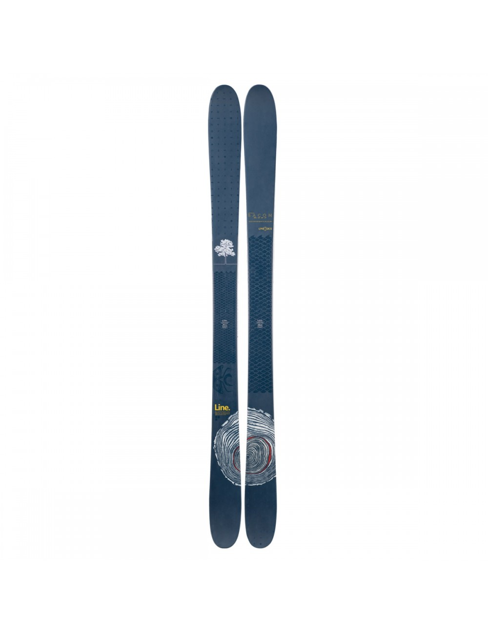 Line Sir Fancis Bacon Ski_1000192