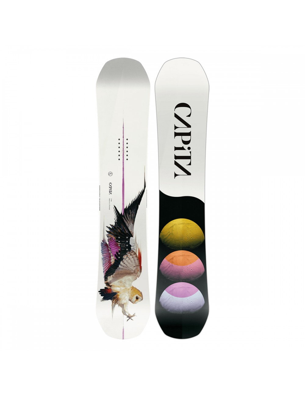 Capita Birds of a Feather Board_1001146